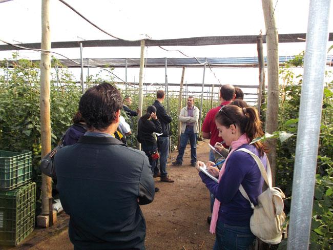cultivo-horticolas-master-1