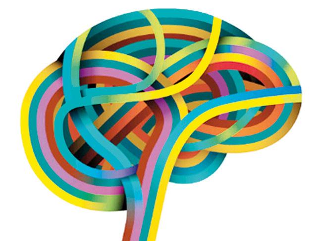 psicologia-cerebro