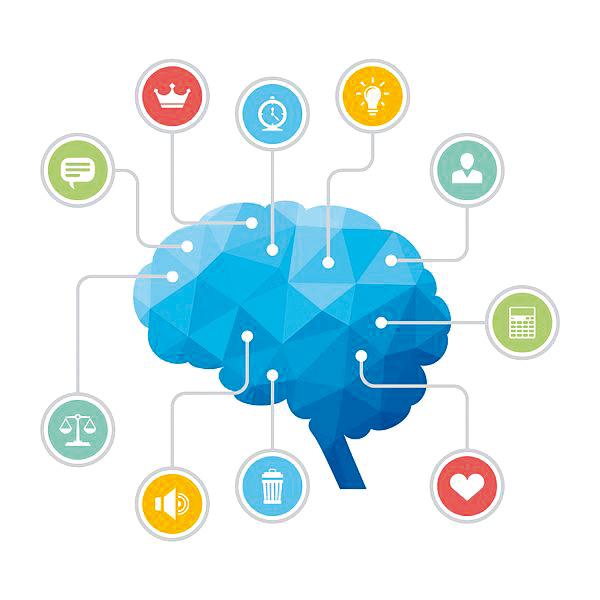 master-ciencias-comportamiento - Nova Ciencia