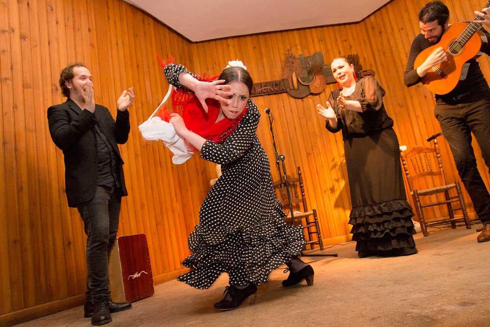 Espectáculo que cerró el ciclo Flamenco en Red.