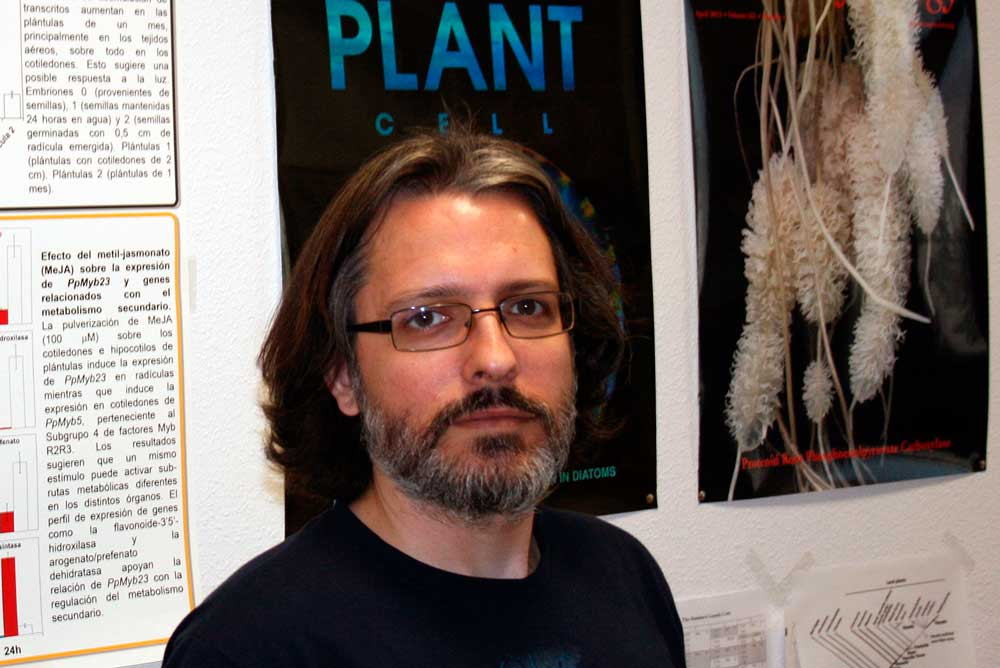 Rafael Cañas ha obtenido un nuevo modelo metabólico del maíz.