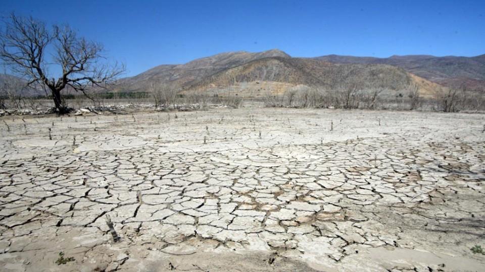 El 17 de junio se celebra el Día Mundial de la Lucha contra la Desertificación y la Sequía.