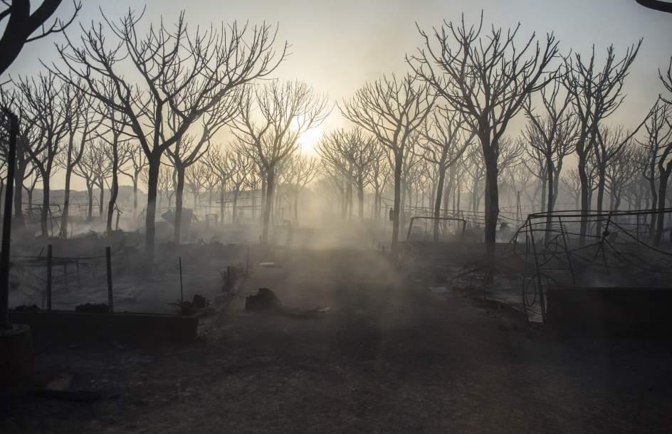 Incendio en el parque natural de Doñana.