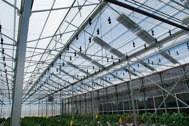 invernadero-con-placas-solares
