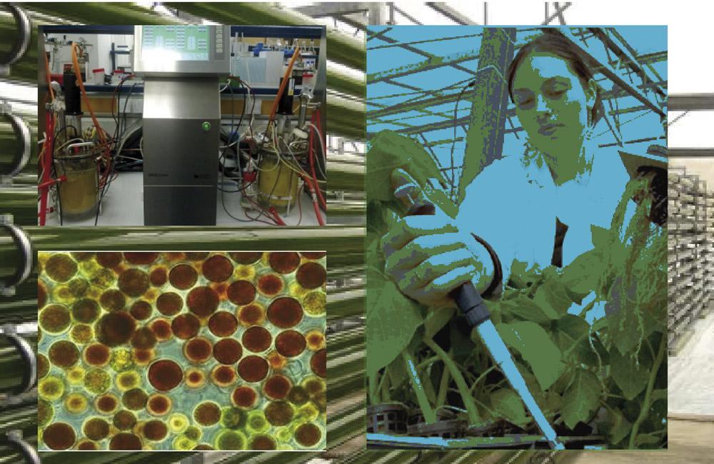 master-biotecnologia