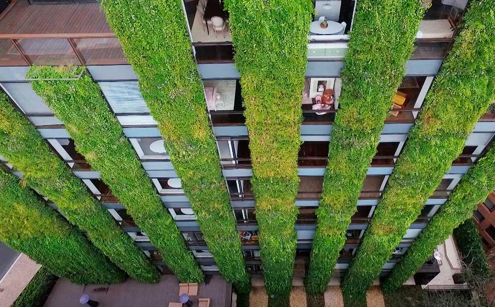 Santalaila, el jardín vertical más grande del mundo.