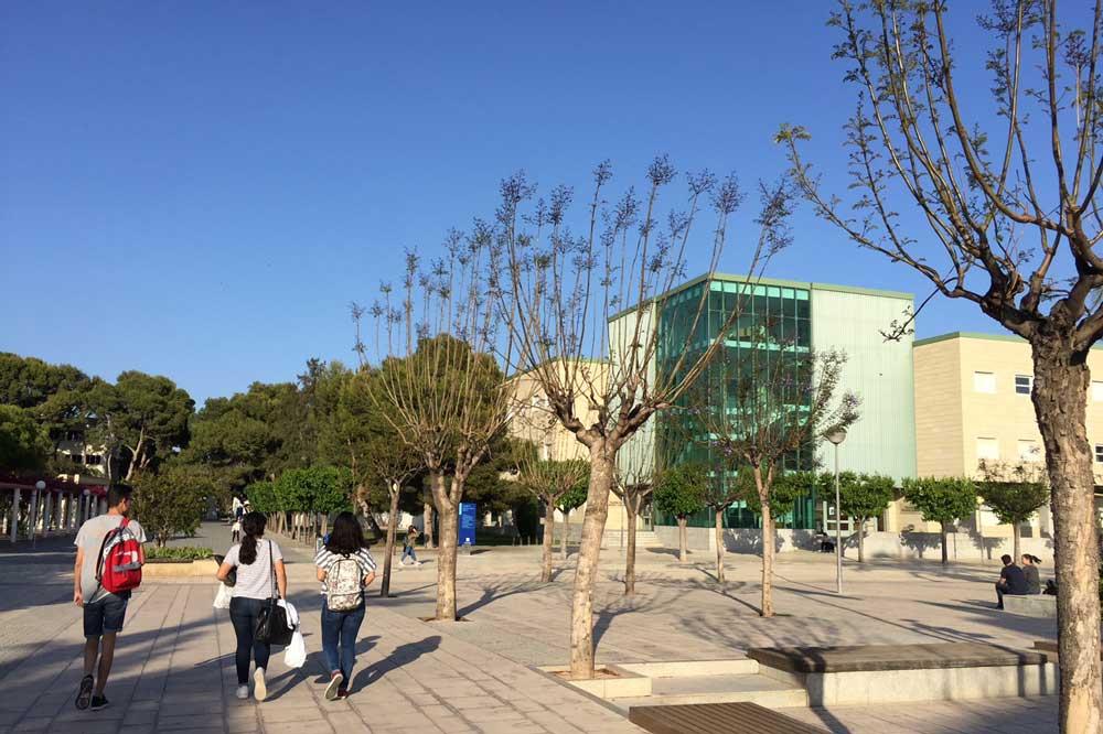 Facultad de Filosofía y Letras de la Universidad de Alicante.