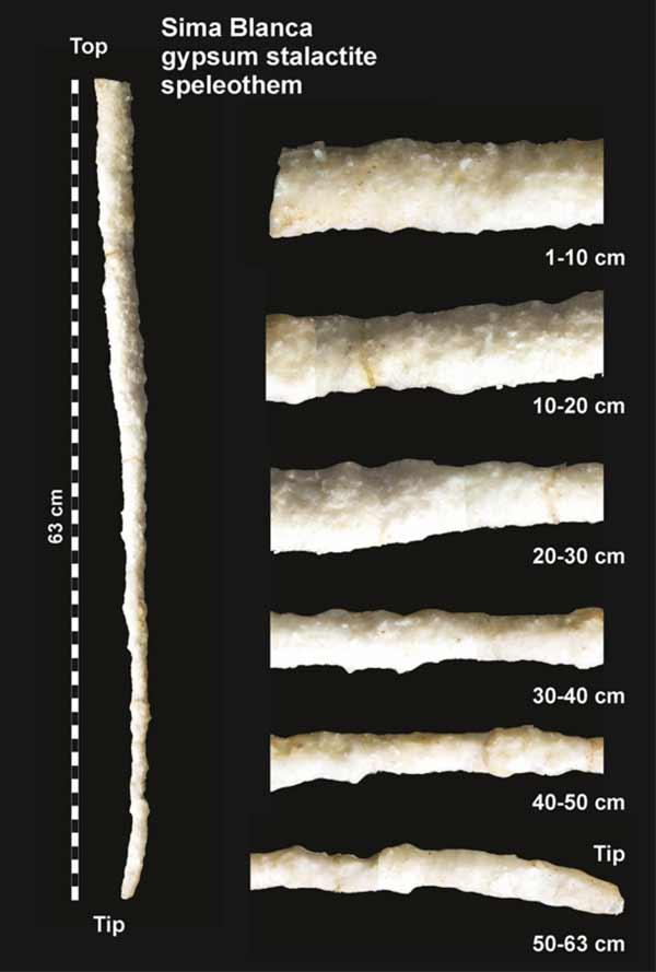Estalactita de yeso de las Cuevas de Sorbas analizada por los investigadores de la UAL.