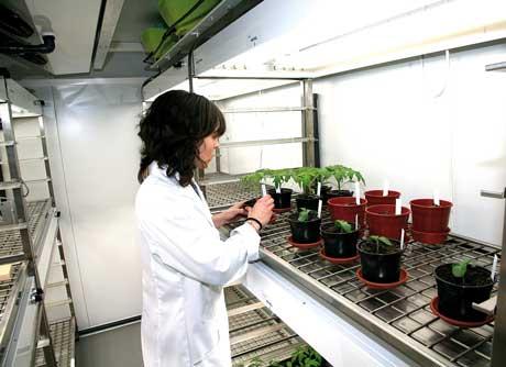 savia-biotech-laboratorio