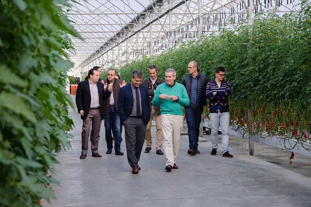 Representantes de la UAL han conocido un invernadero de última generación del grupo Caparrós.