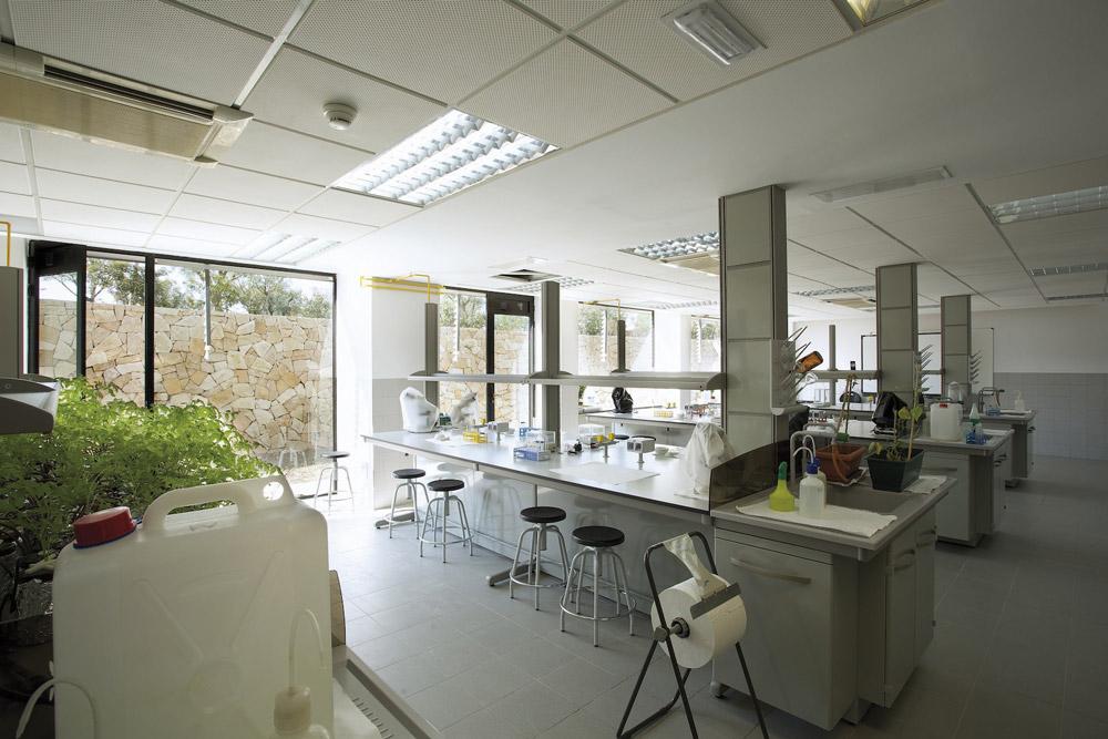 Los masteres de la Universidad de Alicante abordan todas las áreas de conocimiento.