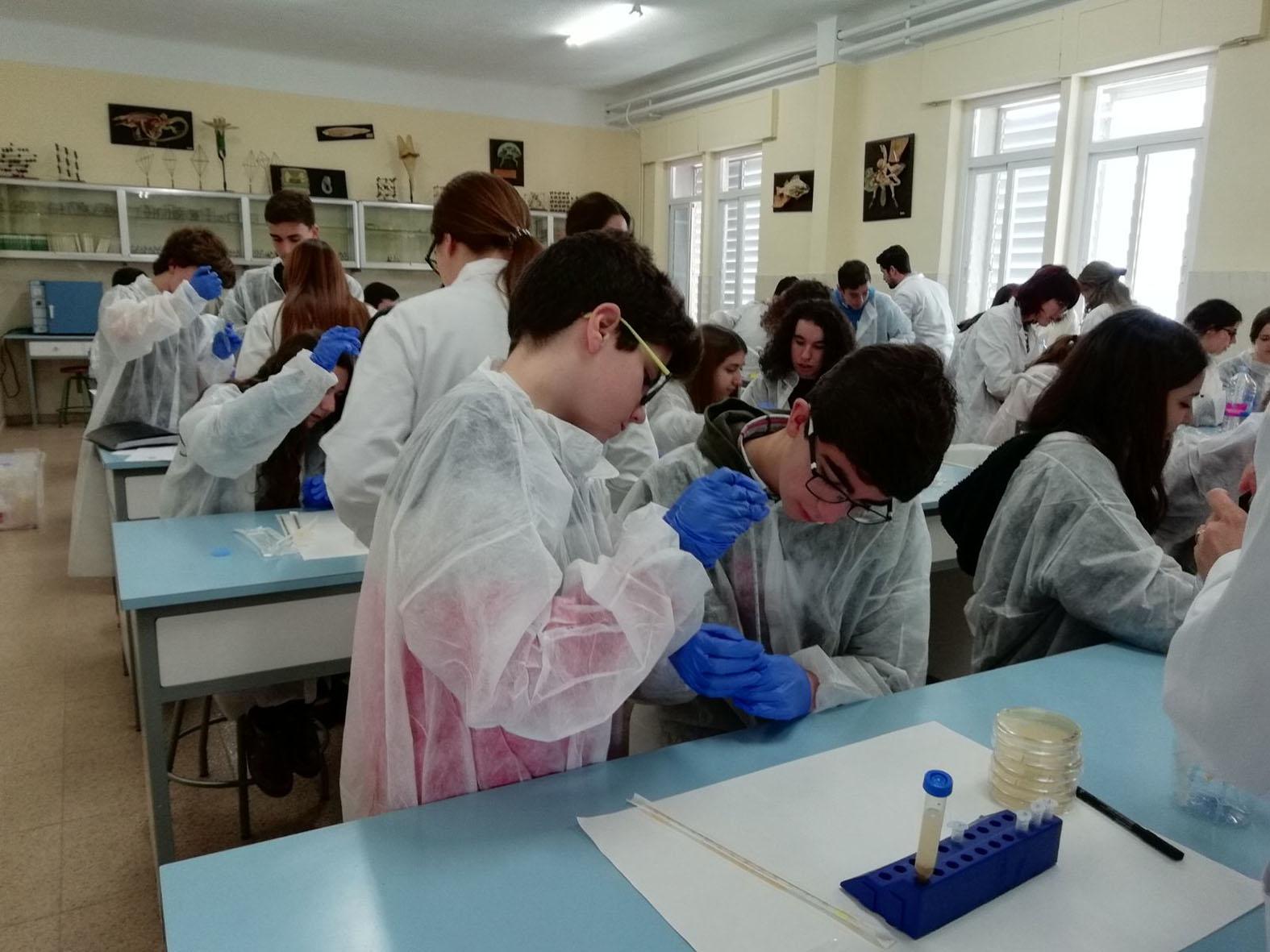 Nova Ciencia | Universidad, ciencia y empresa del sureste español ...