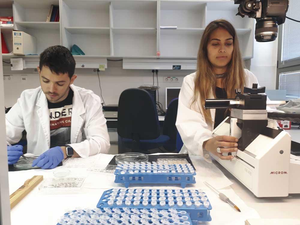 Sesión de prácticas del Máster en Biomedicina Experimental de la UCLM.