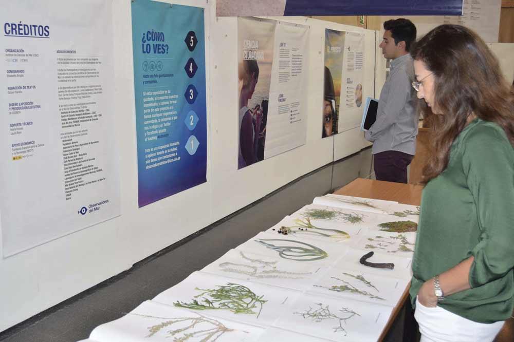 Exposición de CECOUAL, centro de investigación y colección científica de la UAL.
