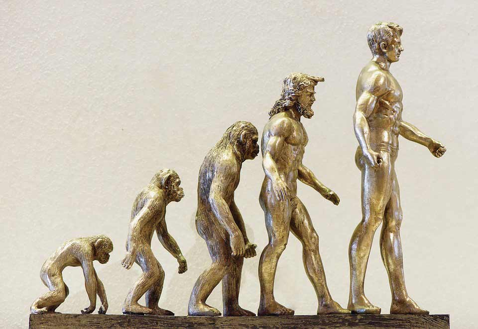 Máster en antropología de la umh