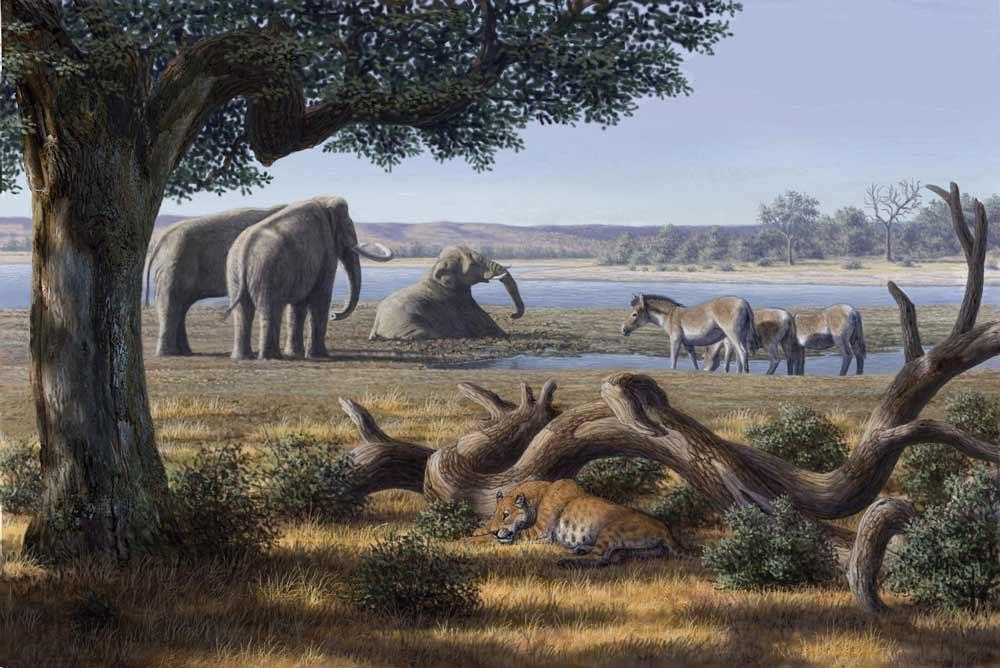 Paisaje que presentaría Orce hace 1,4 millones de años