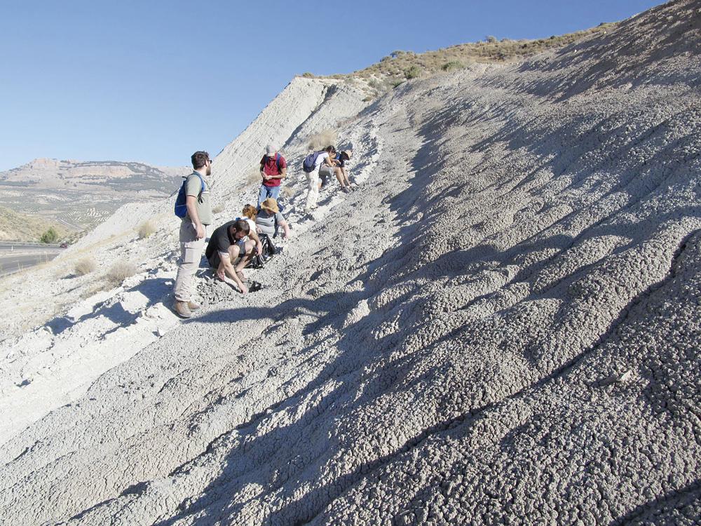 Investigadores de la UJA analizan el talud donde se encuentra el afloramiento del Toarciense.