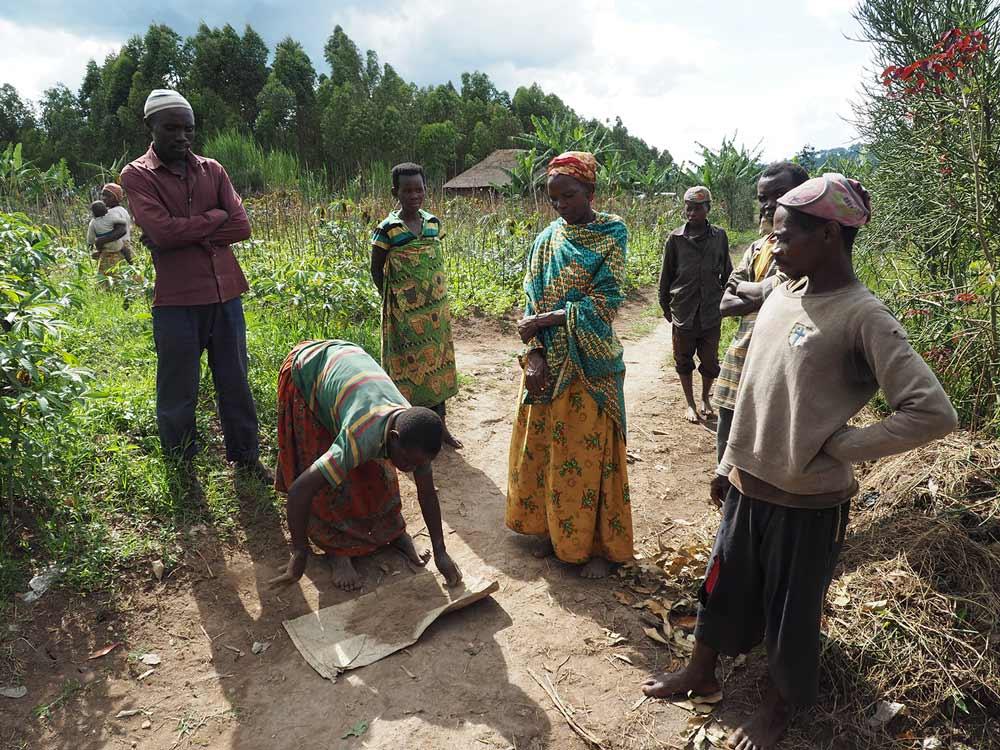 los batwa aprendieron a seleccionar semillas