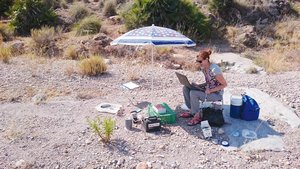 María del Mar Sánchez coteja muestras en uno de los ríos secos estudiados en este proyecto.