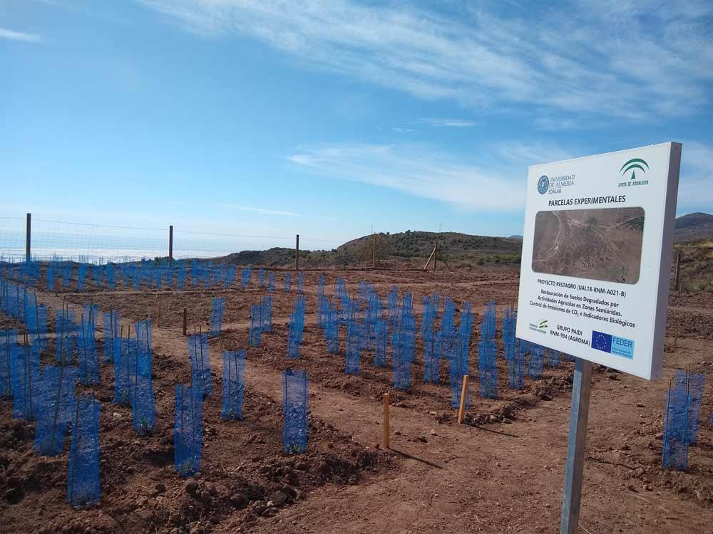 Actuación en suelos degradados de uso agrícola.